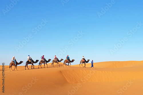 Poster Chameau Camel caravan going through the sand dunes in the Sahara Desert, Morocco