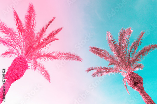 Two tall palm trees on toned gradient pink blue sky with light fluffy clouds Canvas Print