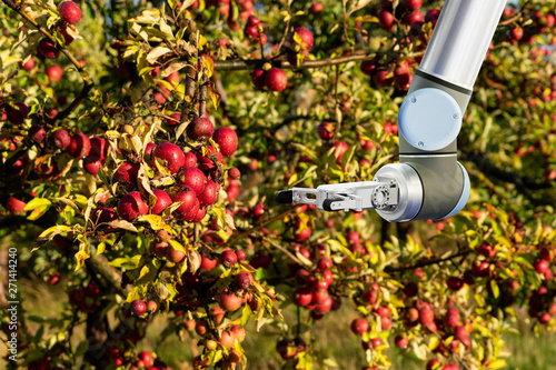 Aufkleber - The robot arm is working in the smart farm. Digital transformation of farming.