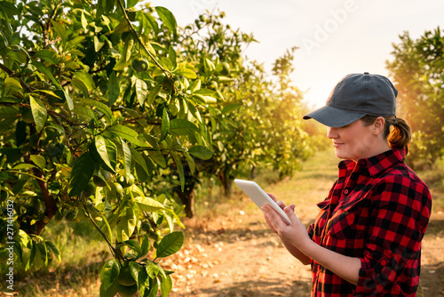 A woman farmer examines the garden of fruits and sends data to the cloud from the tablet Wallpaper Mural