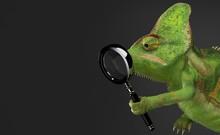 Chameleon Holding Magnifying G...