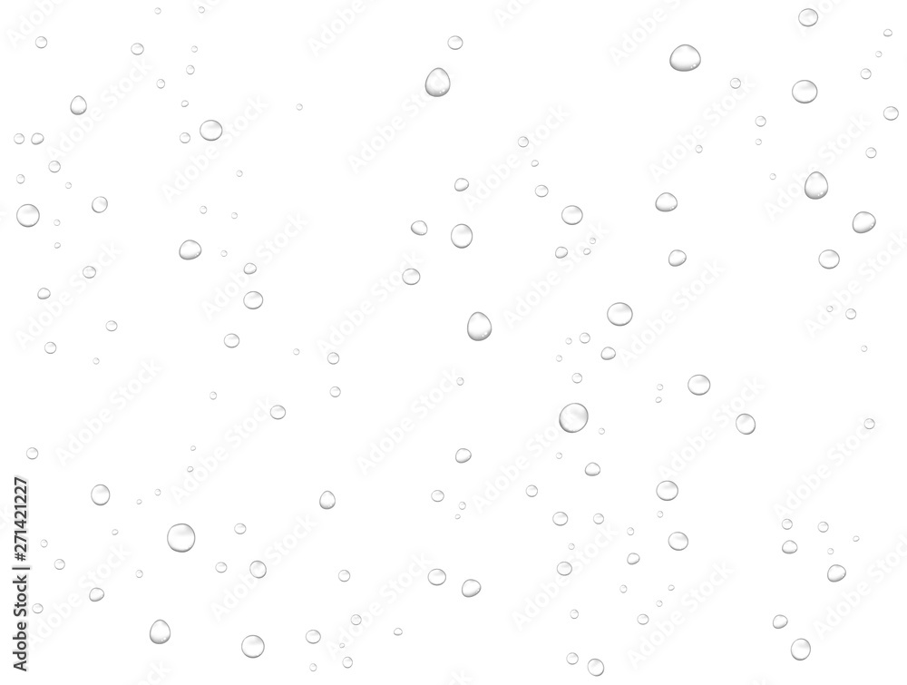 Fototapety, obrazy: Vector rain water drops on white background. Pure realistic droplets condensed.