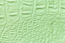 Light Green Leather Texture Background, Closeup. Reptile Skin, Macro.