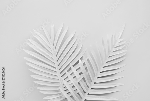 Collection of white tropical leaves,foliage plant with color space background.