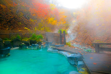 Japanese Hot Springs Onsen Natural Bath Surrounded By Red-yellow Leaves. In Fall Leaves Fall In Japan.
