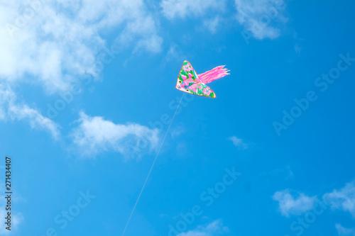 Aluminium Prints Dark grey A red kite flying against a blue sky