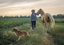 Young Blonde Girl In A Hat And A Plaid Shirt Walks With A Horse And Dog On A Farm In The Village