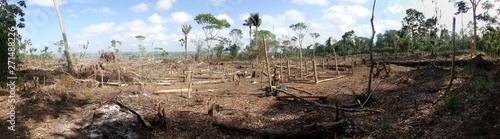 Valokuva  Area of illegal deforestation of vegetation native to the Brazilian Amazon fores