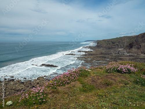 Rugged coastal path at Widemouth Bay looking towards Bude in Cornwall Canvas Print