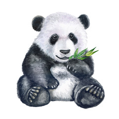 FototapetaCute panda with bamboo isolated on white background. Bear. Watercolor. Illustration. Clip art. Hand painted.