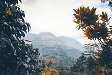 Views Of The Hills In Ramboda