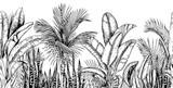 Bezszwowa linia pozioma z tropikalnymi palmami, liśćmi bananów i roślinami węża. Czarny i biały. Ręcznie rysowane ilustracji wektorowych. - 271508003