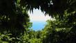Blick aufs Meer durch Waldlichtung, Mittelmeer