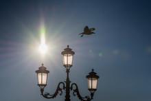 Italy Street Lamp ,lamppost In Venice, Italia,march, 2019