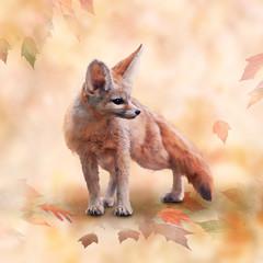 Fennec Fox watercolor illus...