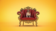 Dog With Crown In A Chair. 3d ...