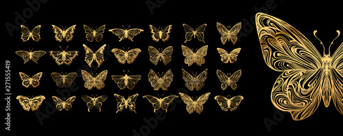 Set of butterflies, ink silhouettes. Glowworms, fireflies and butterflies icons isolated on white background. Hand drawn elements, Vector illustration. - 271555419