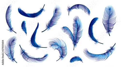 Fotografia Vector feathers collection, set of different falling fluffy twirled feathers, isolated on transparent background