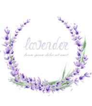 Lavender Wreath Vector Watercolor. Round Frame Decor Illustrations