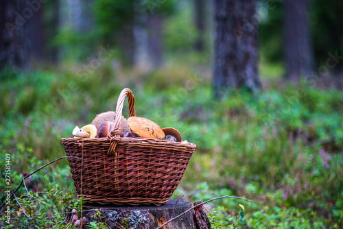 Poster Picnic wowen wooden picnic basket in nature trails in summer