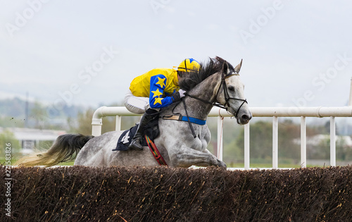 Race horse and jockey jumping a hurdle on the race track