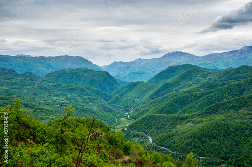 Fotografie, Obraz Montenegro, Endless view over green tree covered mountains forming moraca canyon