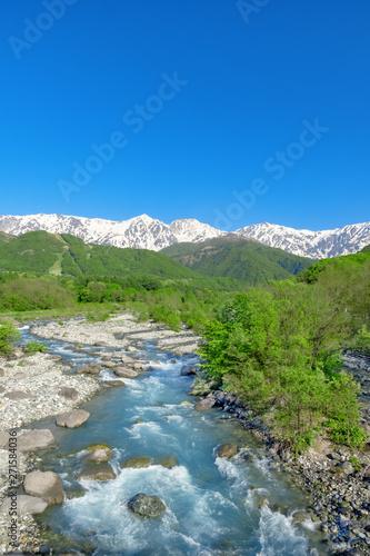 新緑と川の流れ 白馬村松川と白馬三山