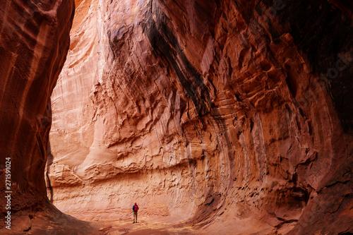 Fotografie, Obraz Slot canyon