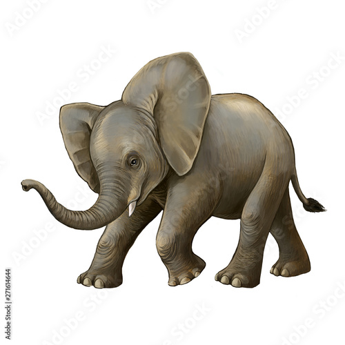 cartoon scene with little elephant on white background safari illustration for children