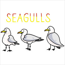 Cute Seagull Text Cartoon Vect...