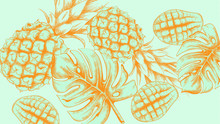 Pineapple Tropic Summer Pattern Vector Line Arts. Exotic Banner Card Template. Vintage Style Blue Colors