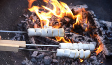 Person Toasting Three Skewers Of Marshmallows