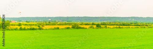 Fotomural Typical Dutch polder landscape