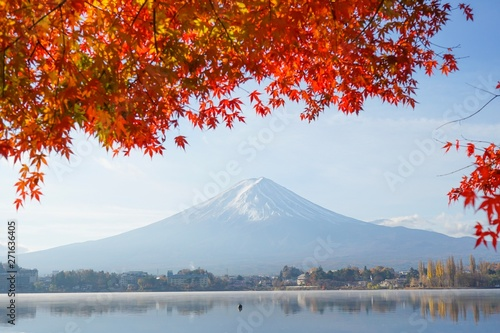 Canvas Prints Cuban Red Beautiful red leaf maple tree with Mt.Fuji at Japan in Autumn.