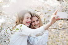 Two Cheerful Young Women Smiling And Taking Selfie Near Trees With White Flowers On Sunny Day In Park