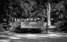 Black And White Park Bench