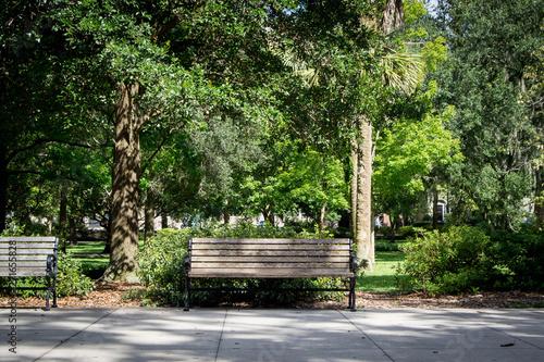 Fototapeta Front of park bench
