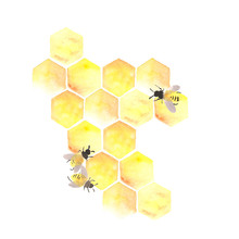 Bee Honeycomb With Honey In A ...
