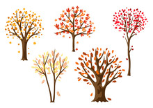 Set Of Autumn Abstract Stylized Trees.