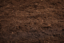 Textured Fertile Soil As Backg...