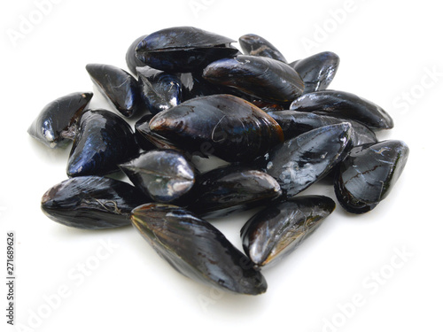 Fresh mussel isolated on white. Canvas Print