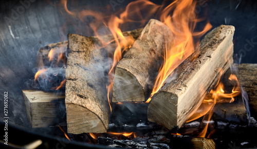 Foto auf Gartenposter Feuer / Flamme Recently lit fire with logs of flaming wood