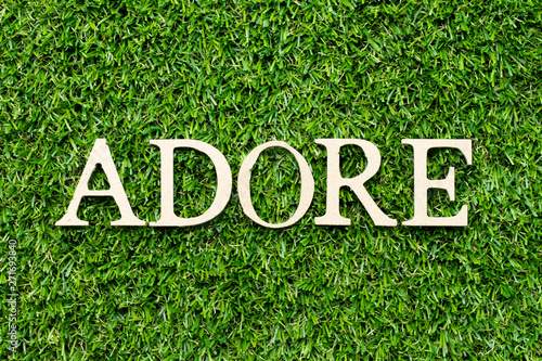 Photo Wood alphabet letter in word adore on green grass background