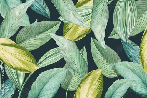 Canvas Prints Textures Tropical foliage background