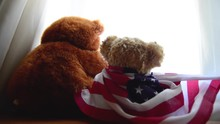 Two Teddy Bears One With American Flag Looking Thru The Window