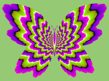 Green And Purple Butterfly. Optical Expansion Illusion.