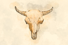 Watercolor Drawing Of A Bull's Head On A Light Background
