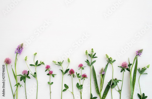 Poster Fleur Flower composition. Summer flowers on pastel background. Top view, flat lay.