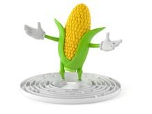Corn Character Inside Maze