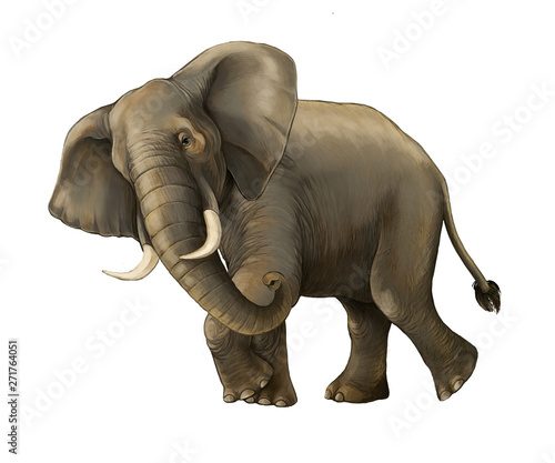 cartoon scene with big elephant on white background safari illustration for children